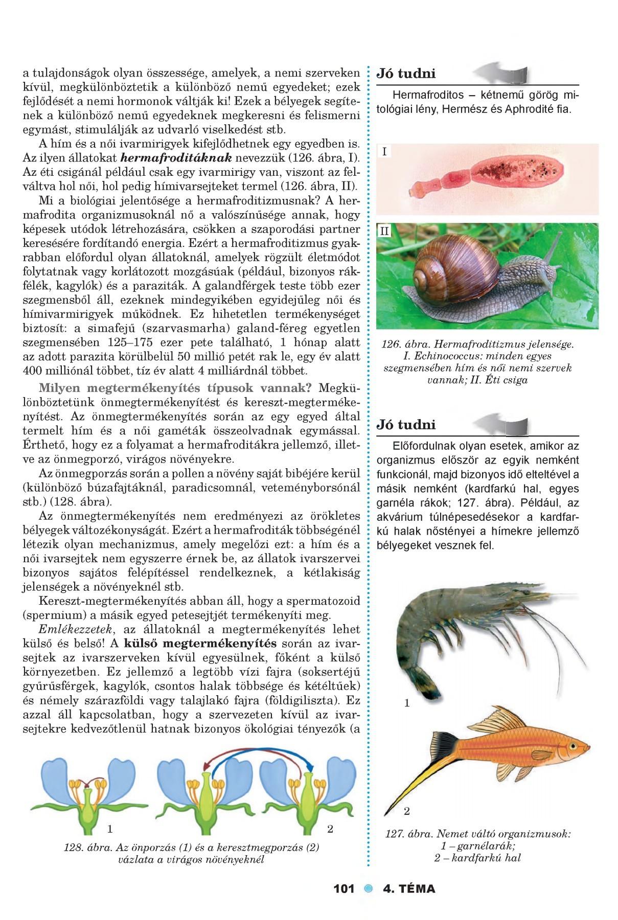 A parazita növények génlopással válnak egyre sikeresebbé | prohormones.hu