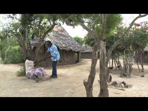 paraziták és elephantiasis