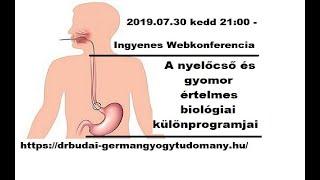a gyomor betegségei, amelyek rossz leheletet okoznak