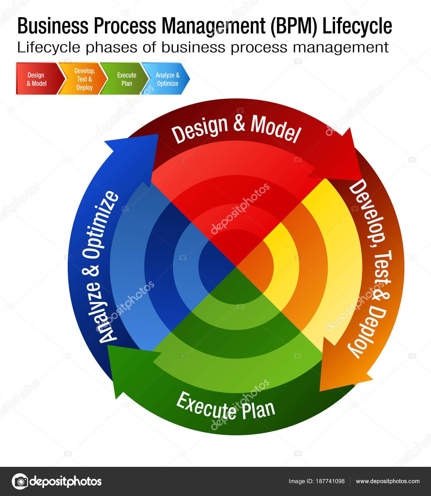 galandféreg fejlesztési ciklus diagram