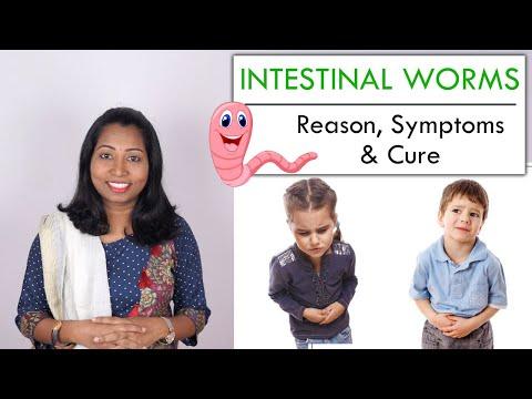 pinworms élhet az epehólyagban)