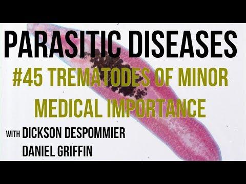 paraziták kezelése a test gyógyszereiben