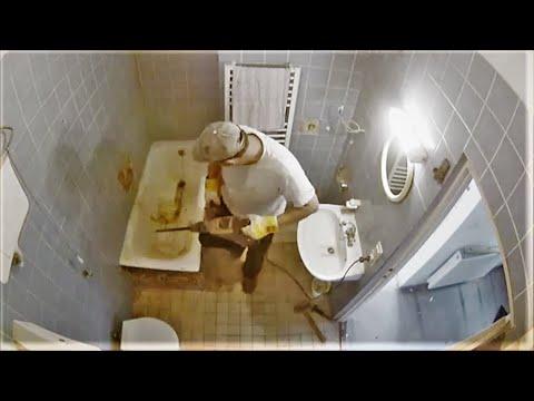 a fürdőszobában élő parazita)