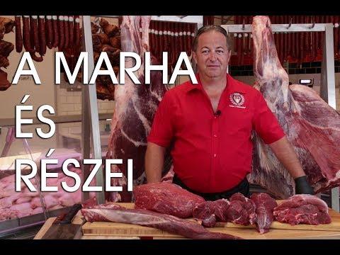 steak és paraziták