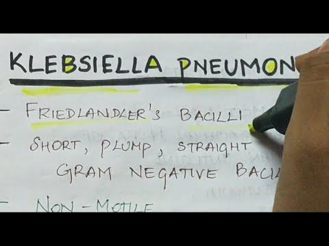 Klebsiella paraziták)