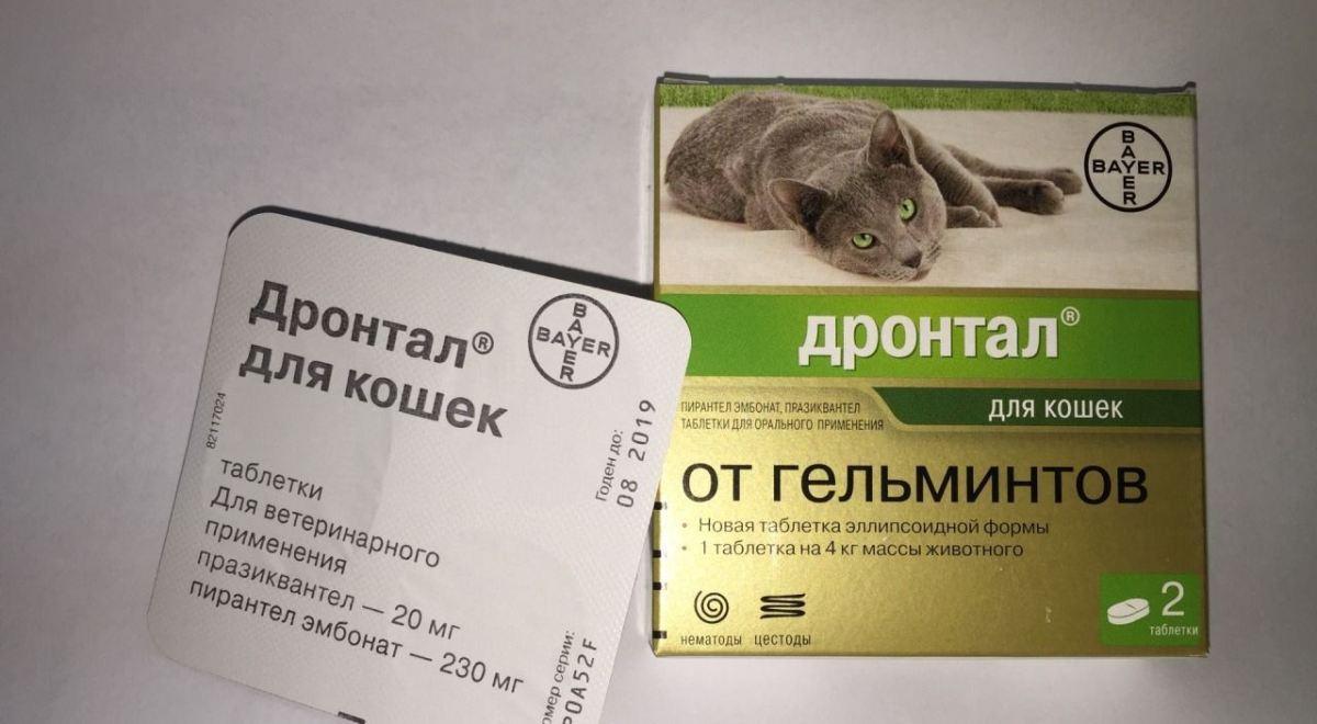 gyógyszerek, amelyek növelik az anyagcserét a szervezetben egészség rossz lehelet