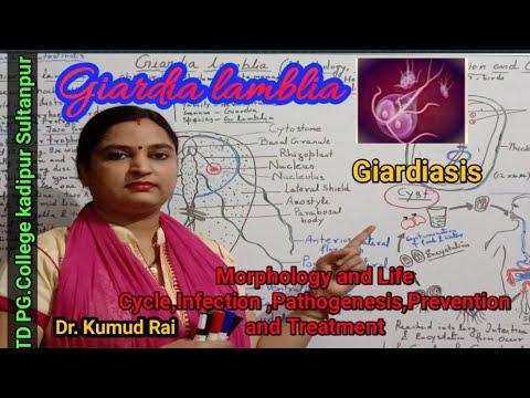 enterotest giardiasis esetén