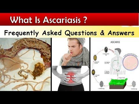 ascaris komplex annelidek és laposférgek típusai