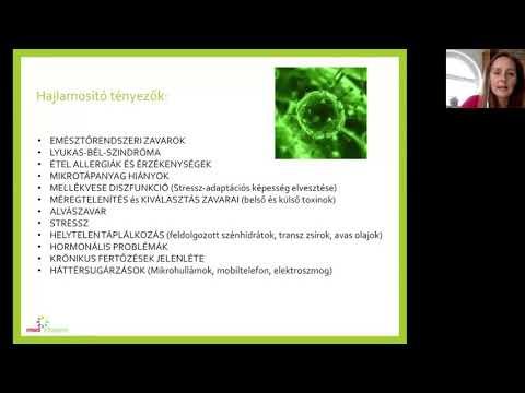paraziták a testért folytatott harcban)