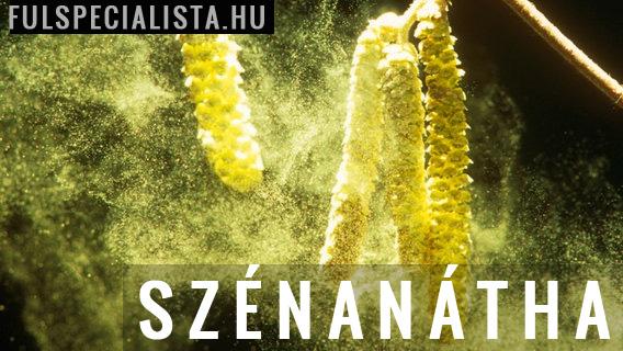 szénanátha és paraziták)