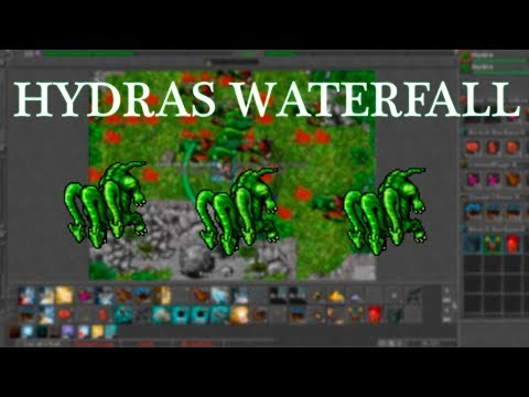 hidra parazita az emberben