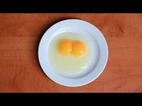 körömféreg- tojás emberi méret