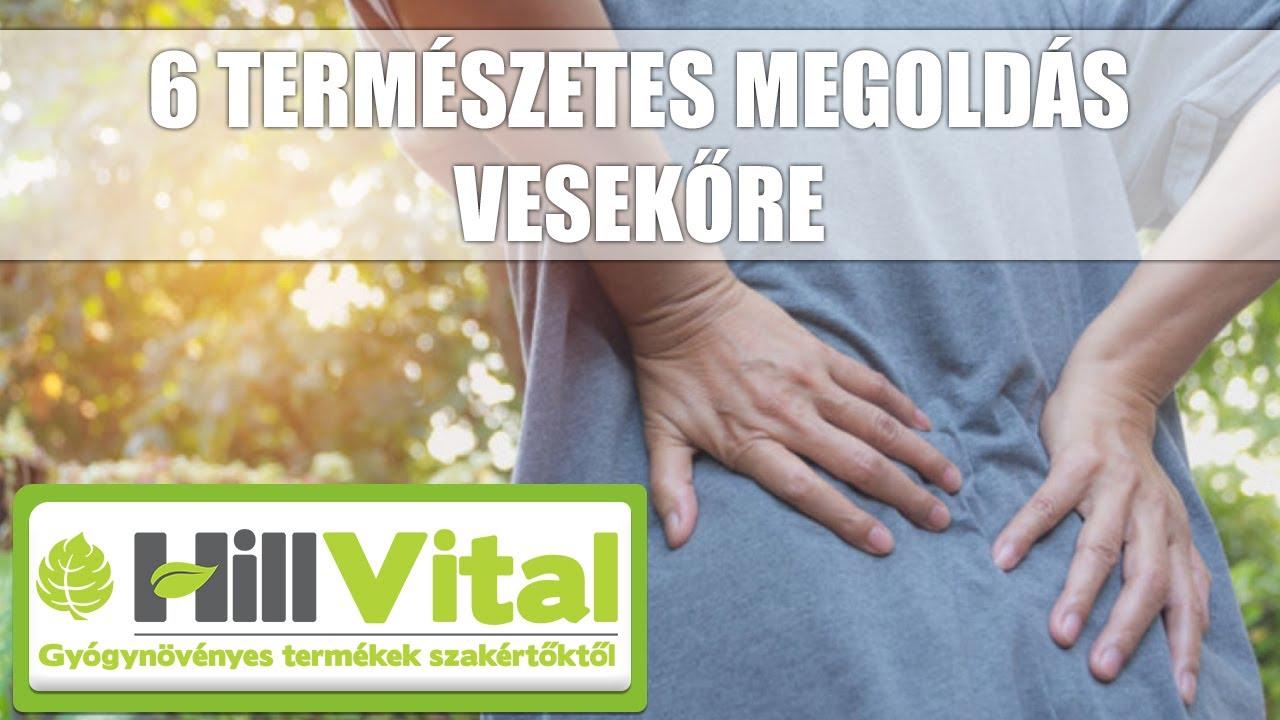 paraziták és leukémia)