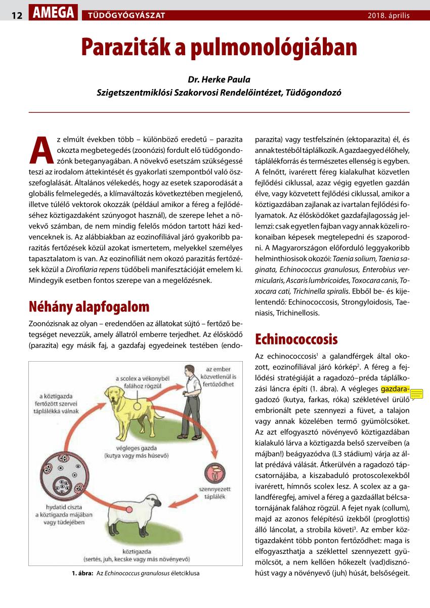 paraziták, például szarkódok krónikus enterobiasis felnőttek kezelésében
