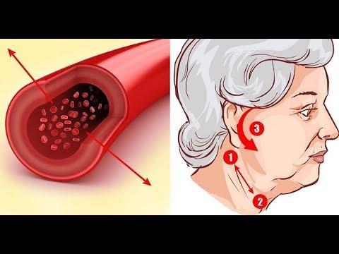 Az emberi gombaféreg testének felépítése - Emberi test
