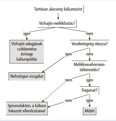 gyógyszerek, amelyek helyettesítik a káliumot a szervezetben)