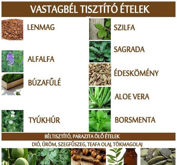 Búzafű vagy paraziták - Parazita eltávolító termékek
