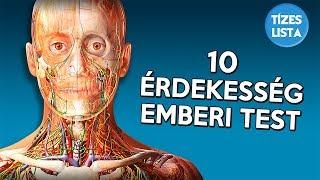 Hány körömféreg él az emberi testben