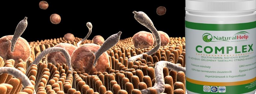 Gyümölcs giardiasisban - A paraziták testének tisztítása ivanchenko szerint