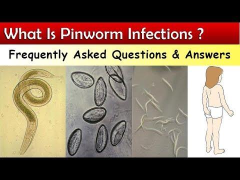 pinworm milyen férgek)