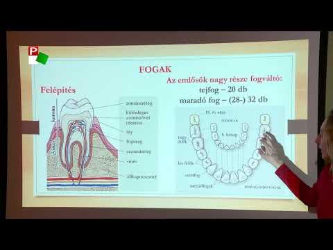 milyen gyógymód a pinwormok ellen a gyógyszer testre gyakorolt mellékhatása